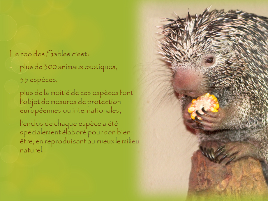 planche-animaux