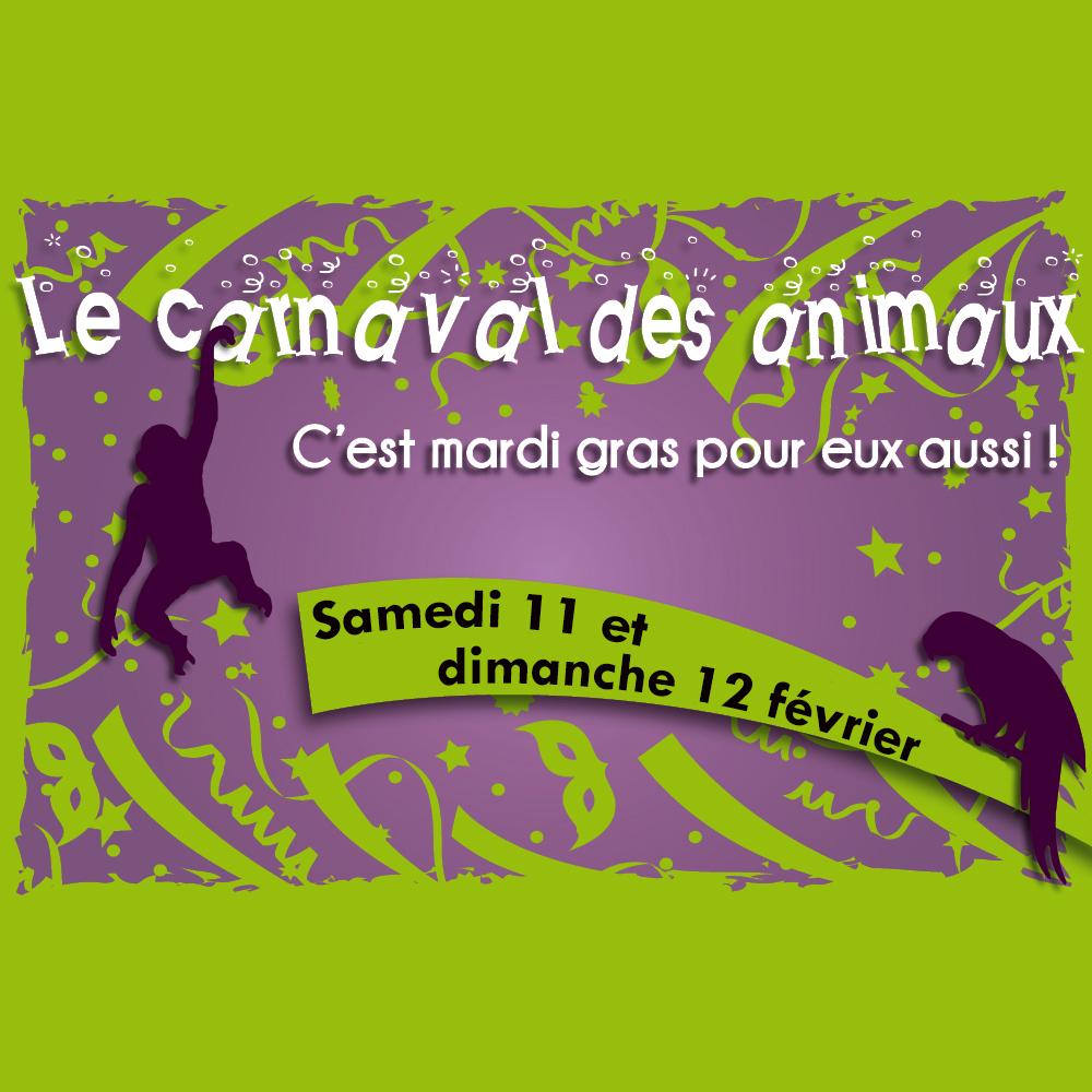 On Saturday, 11th and Sunday,12th of February : The Carnival of animals