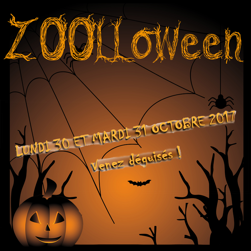 ZOOLLOWEEN, Monday 30th and Tuesday 31st October 2017