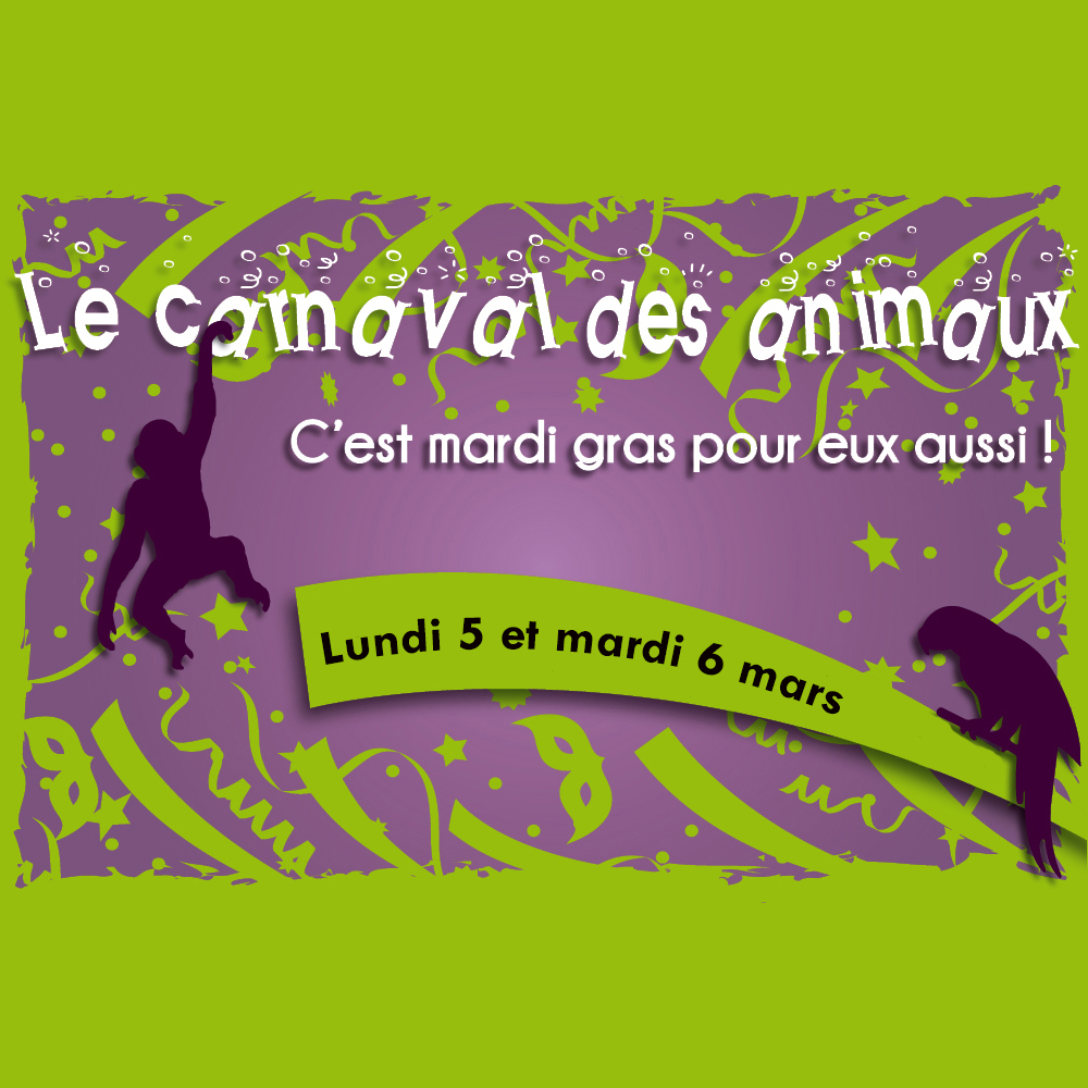 On Monday, 5th and Tuesday, 6th of March : The Carnival of animals