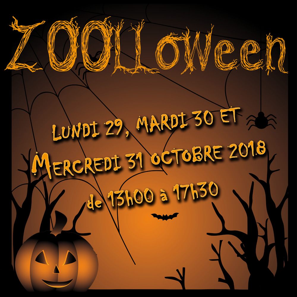 ZOOLLOWEEN, Monday 29th, tuesday 30th and wednesday 31st October 2018