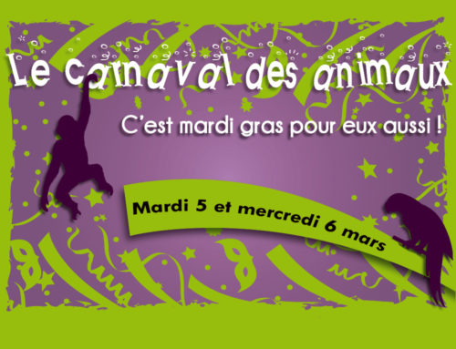On Tuesday, 5th and Wednesday, 6th of March : The Carnival of animals