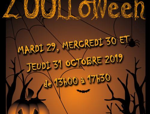 Mardi 29, mercredi 30 et jeudi 31 octobre 2019, c'est ZOOLLOWEEN au zoo des Sables !